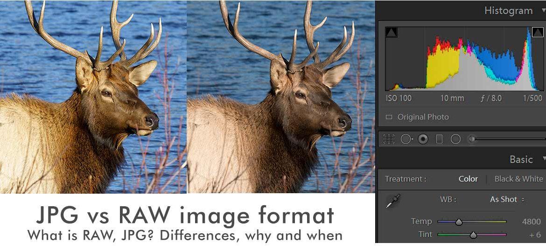 RAW vs JPG image format