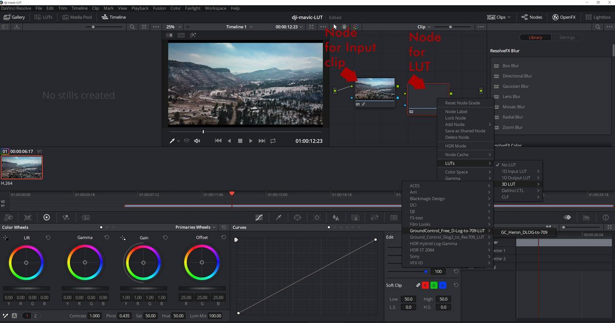 DaVinci RESOLVE -- What are the options -- where and when could we apply a LUT?